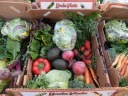 61499-veggiebox