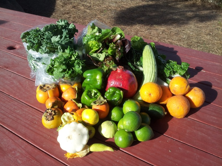 This weeks box 10-26-2014