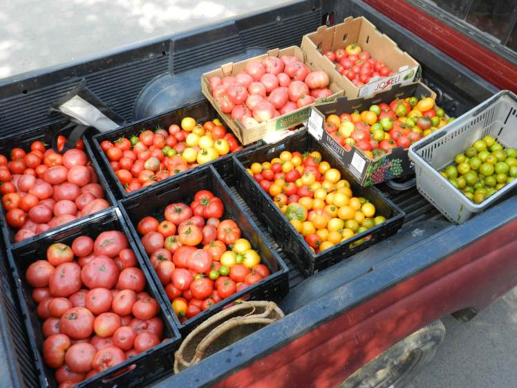 tomato truck-2