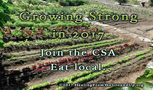 growing-strong-in-2017